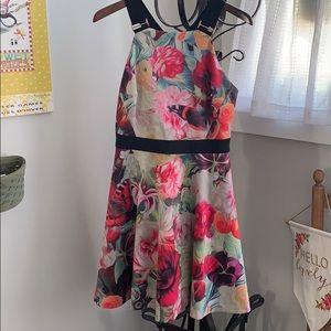 Ted Baker London Dress  TedSize:4